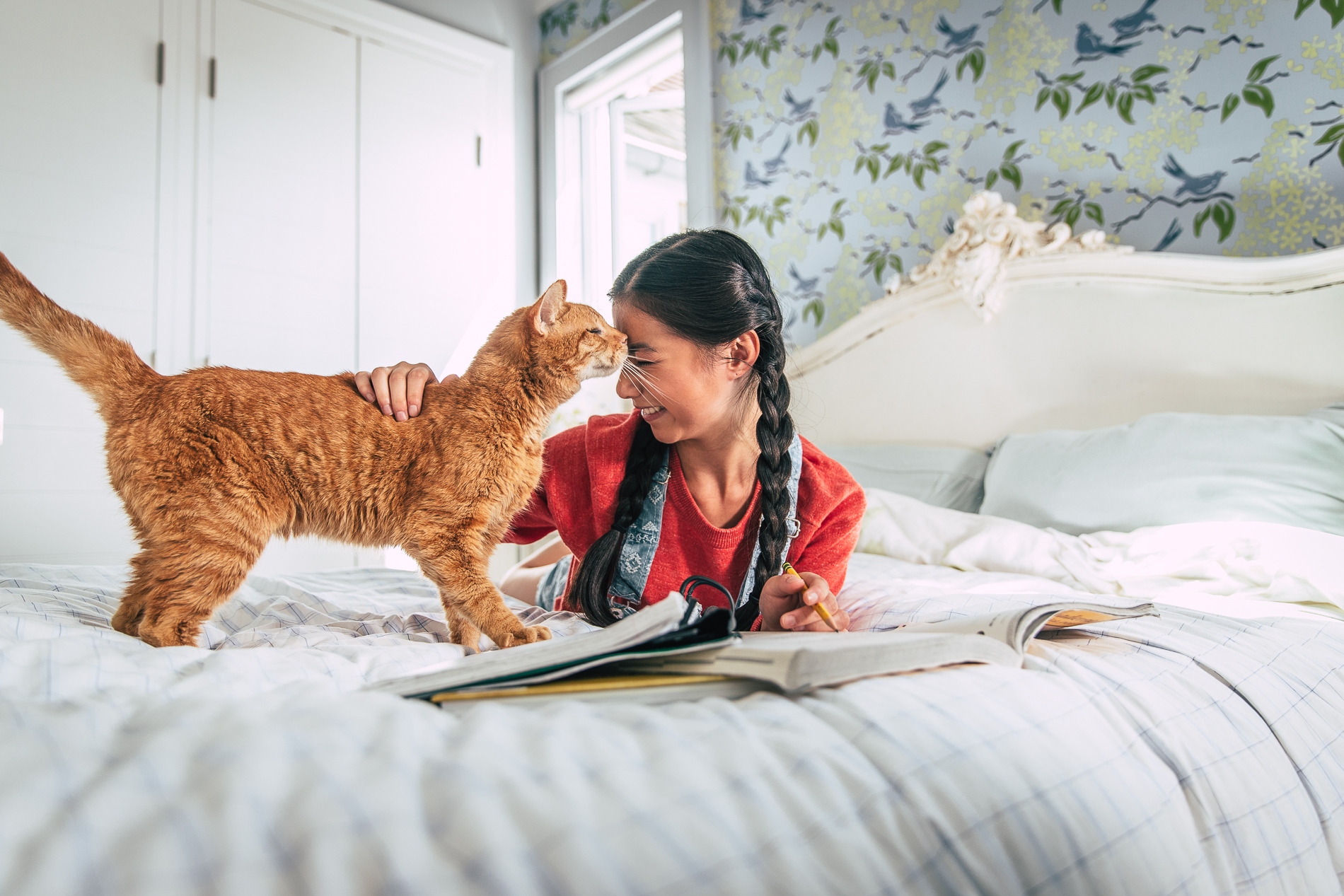 Young Girl Working on Homework with a Cat
